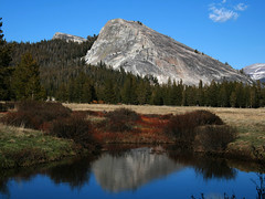 River Reflection (mcmillend) Tags: california reflection yosemitenationalpark tuolumnemeadows lembertdome naturesfinest tuolumneriver qemdfinchadminsfavforjune