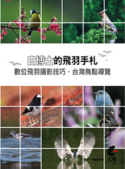 My book published! 我的新書發行啦!