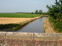 Taraloka canal 2