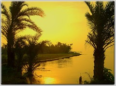 Sunset on river padma and the river shore (picazam) Tags: flowers beauty childhood sunrise river lifestyle dhaka sylhet bangladesh the faridpur picazam