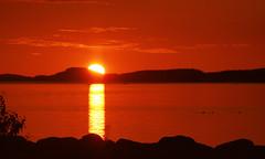 Sunrise Little Trout Bay 4