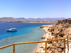 Ras Katy (sciack) Tags: sharmelsheikh diving rasmohammed
