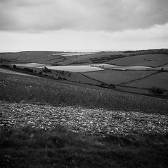 Sussex Fields Forever (Jason Lupi) Tags: bw 6x6 tlr rural mediumformat square landscape sussex brighton kodak 120film hills fields analogue southdowns rapeseed bw400 devilsdyke yashicaa southdownsway southdownsnationalpark