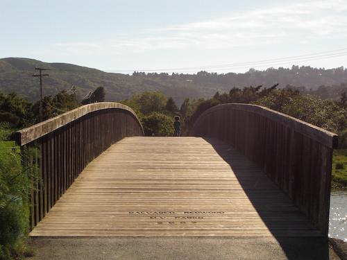 Leafy crossing a bridge