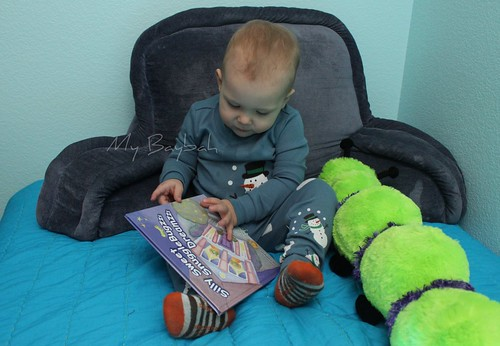 5181372678 5a847bac9f SnuggleBugzzz Review/Giveaway  Toddler Wonderland  CLOSED