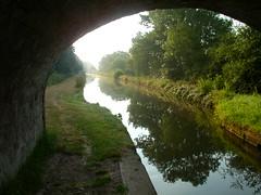 Taraloka canal 6