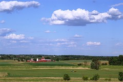 Michigan Landscape in July