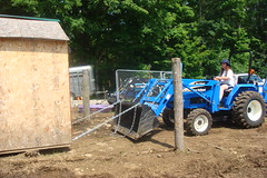 Moving the chicken coop