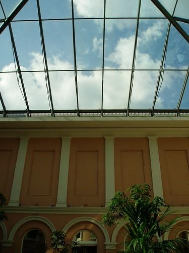 Vista del techo acristalado