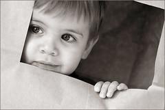 Bag Boy (Victoria Hederer Bell) Tags: boy blackandwhite baby cute look closeup 50mm eyes fingers peek paperbag pprtrait canon40d