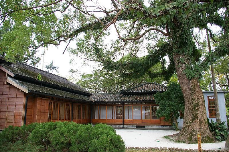IMGP8400_後院與百年老樟樹