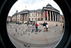 (Amy Lu) Tags: camera london fisheye 2007
