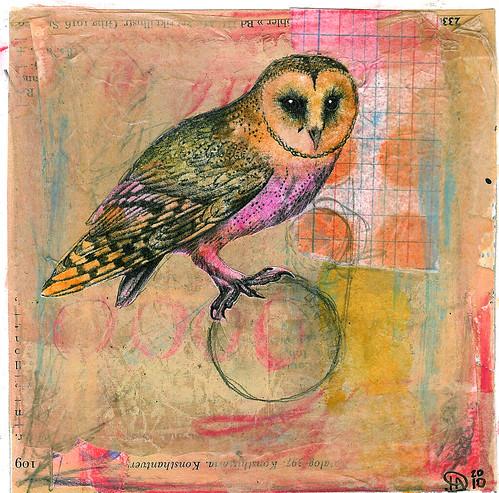 Owl in balance
