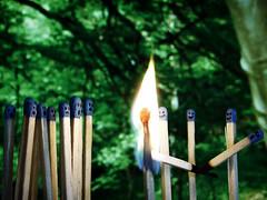Pictures of Matchstick Men (Bobshaw) Tags: men fire death burn match stick figures matchstick abigfave