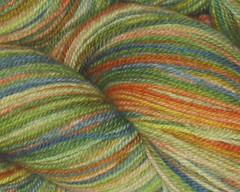 Summer Garden BFL Sock Yarn - 4oz (WW)