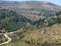 Israel 2007-06-12 IMG_2332 (Exothermic) Tags: trees forest israel jerusalem hills highway1 valley vegetation ישראל ירושלים إسرائيل القـُدْس أورشليمالقدس כביש1