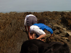 Bending over looking at rockpools
