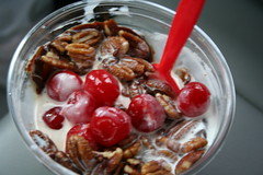 Hot Fudge Custard Sundae with Butter Pecans and extra cherries. YUM.