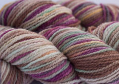 Boaz on Cestari Super Fine Merino Wool - 4 oz. (...a time to dye)