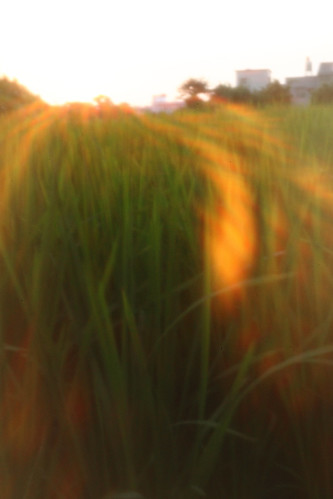 IMG_4772 (by Sandor's Album)