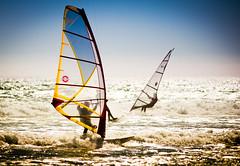 [フリー画像] 運動・スポーツ, マリンスポーツ, ウィンドサーフィン, 201006121300