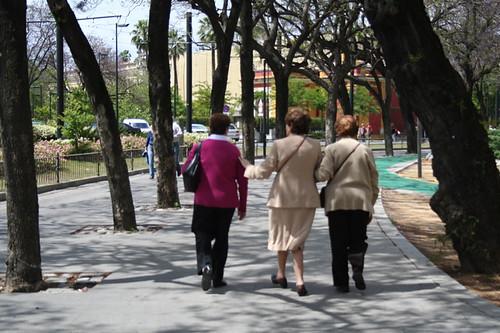 Dianas- Spain 2010 235