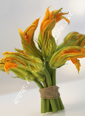 Flowers - Zucchini Blossoms Bouquet [01]