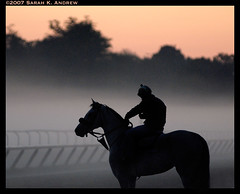 Morning Has Broken (Rock and Racehorses) Tags: horse ny newyork oklahoma silhouette sunrise dawn saratoga peach explore rider thoroughbred coolanimals morninghasbroken diamondclassphotographer flickrdiamond
