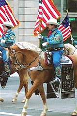 Palomino Posse_Inaugural Parade (2005) (catface3) Tags: california blue horses animals golden washingtondc dc cowboy embroidery merced sheriff animalplanet posse bridle palomino whitehat inauguralparade tapaderos decoratedanimal theperfectphotographer catface3