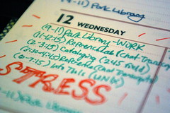 Day 23 - STRESS
