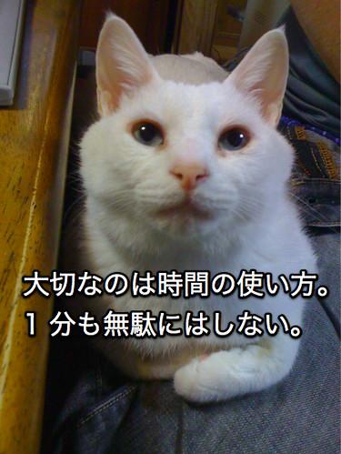 100602_IMG_0557