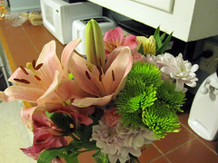 gradGifts03 (mary2678) Tags: flowers burlington university vermont graduation class gift vt uvm 2010 undergraduate