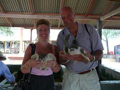 P1040764 (raafjes) Tags: bali turtleisland pulauserangan
