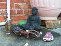 Buddha in the garden, taraloka