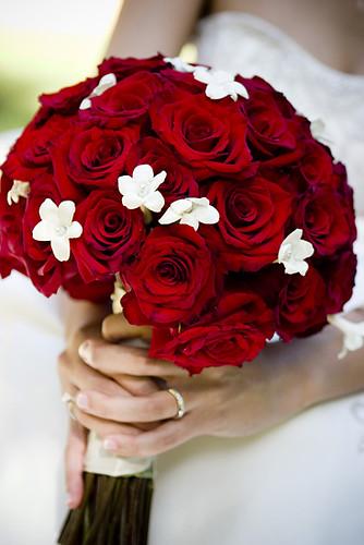 الورد الاحمر وسحر جماله..إإ 770974753_a29527d475