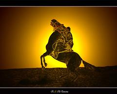Horse and Horseman (a-tamimi) Tags: horse arab  ksa horseman saud