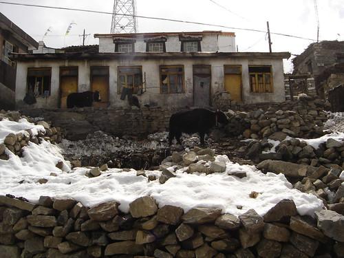 Casas en nyalam toda la calle nevada