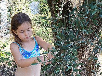 manon et olives.jpg