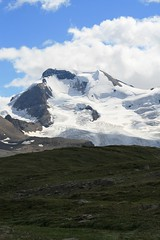Wilcox Pass (rschroed) Tags: icefieldsparkway wilcoxpass