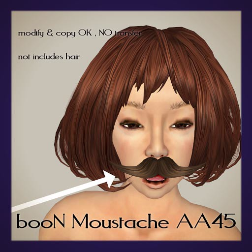 booN moustache1aa45