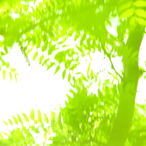 green {4}