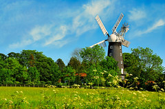 5 sail windmill in Alford Linclonshire (CLIFFWALKER) Tags: windmill lincolnshire alford mywinners platinumheartaward