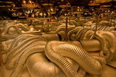 visceri galattici (gufino (out for awhile)) Tags: italia milano dourado luci luzes riflessi lombardia salonedelmobile tubi specchi visceri