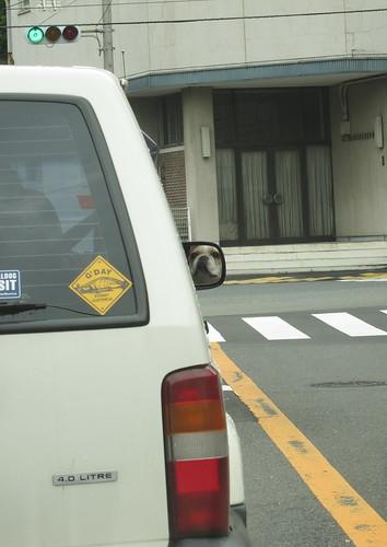 運転手に注目