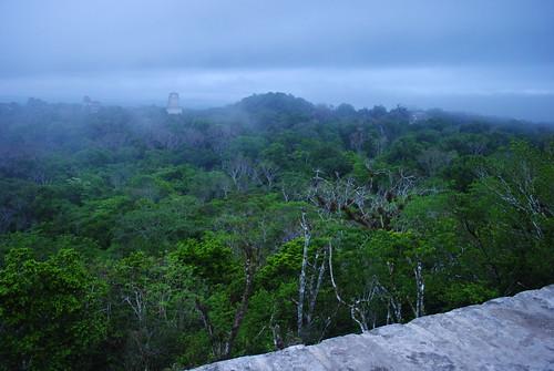 Tikal sunrise 2