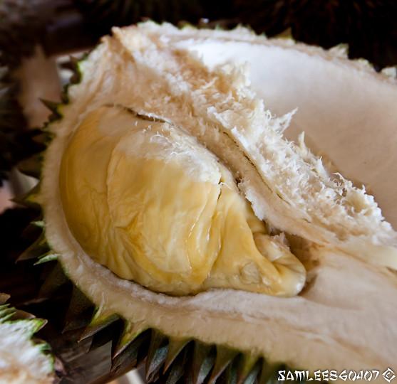 2010.06.19 Bao Seng Durian Buffet @ Penang-6