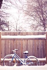 TGIF 11.19.10 (victoria.anne) Tags: winter snow canada cold bike bicycle fence blog backyard winnipeg post manitoba yuck friday tgif mb winterpeg ihatewinter wpg alylenhardt victoriaannephotography thelittlesbackyear itsnowedallnightandisstillgoing ithinkitsablizzard ihavetomoveinaweekinahalfanditsgoingtobecoldandsnowy