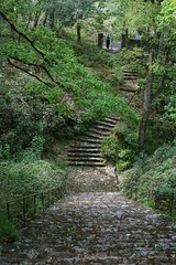Hidden stairs in Glennveigh (Miss Twiga) Tags: ireland stairs vanishingbeauty glennveigh
