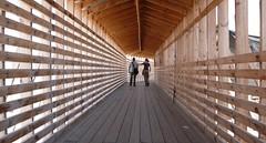i love wooden bridges - by noneck