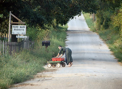 Amish Girl at Work - by cindy47452